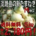 yahoo新玉M5k