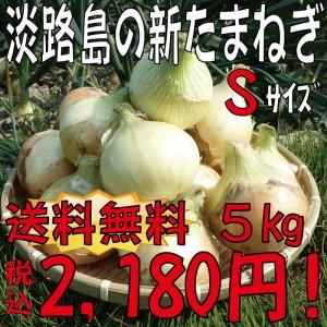 新玉金額S5