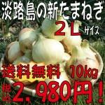 新玉金額2L10