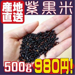 紫黒米hp500