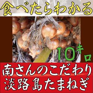 玉ねぎアイコン10