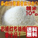 米奉仕品s10s