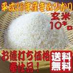 米奉仕品g10s