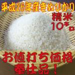 米奉仕品s10
