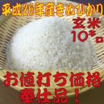 米奉仕品g10