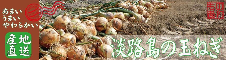 淡路島のおいしい玉ねぎ